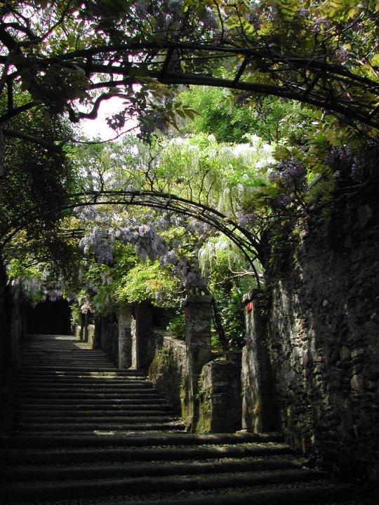 photo de voyage en italie n 13 les jardins d 39 isola madre. Black Bedroom Furniture Sets. Home Design Ideas