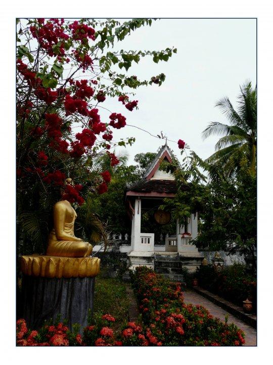 Photo de voyage organis au laos n 92 les jardins du vat for Voyage organise jardins anglais