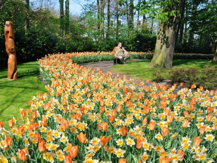 Photo de voyage chez l 39 habitant en pays bas n 35 pas de commentaire - Chez l habitant amsterdam ...
