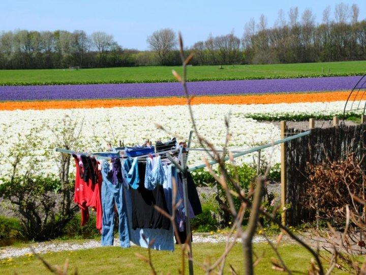 Photo de voyage chez l 39 habitant en pays bas n 51 pas de commentaire - Chez l habitant amsterdam ...
